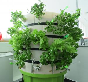hydroponics tower