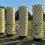 Szennyvíztitítás és növénytermesztés hidropóniával